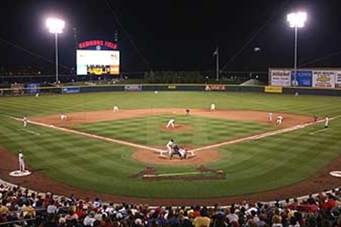 hammons field_1462079767361441782