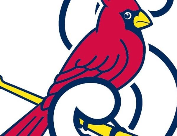 springfield cardinals_5497556514545680930