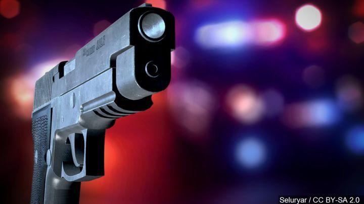 law enforcement gun_1453283743287.jpg