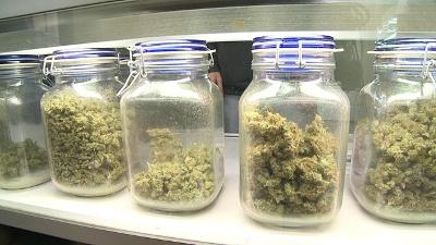 Medical-marijuana-jpg_20160210140813-159532