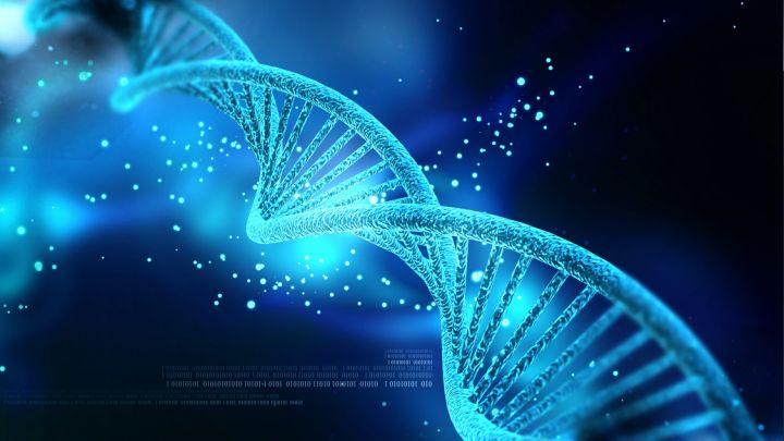 DNA strand_1450270773600.jpg