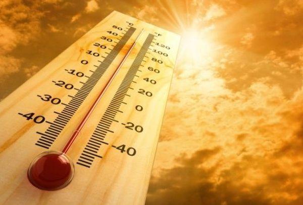 summer heat_1434977725783.jpg