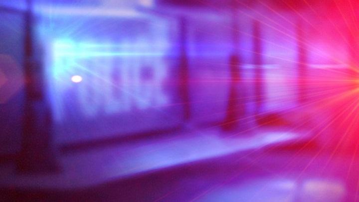 Police Investigate, Search Image