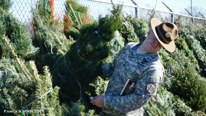 2015 Trees for Troops