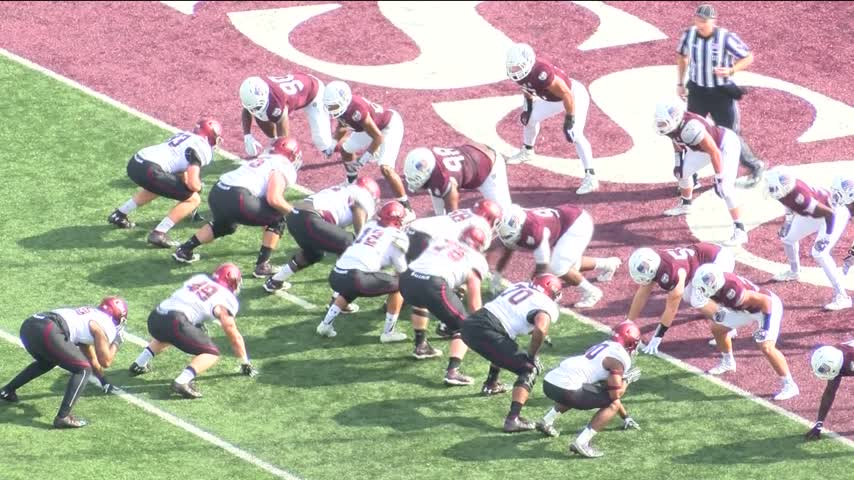 Bear Up With Stec: Southern Illinois