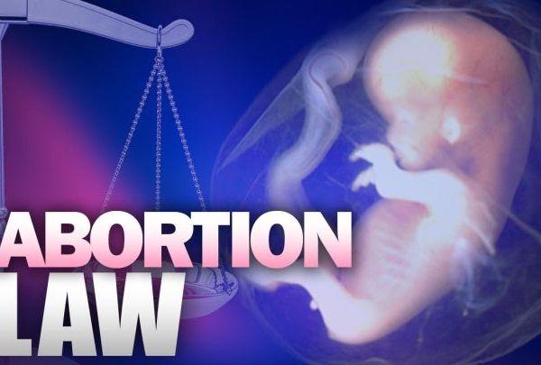 abortion law3_1454077883878.jpg