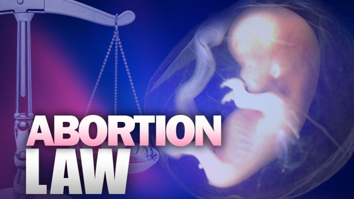 abortion law3_1454077883878.jpg