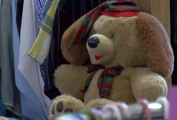 teddy bear_1479384329906.jpg