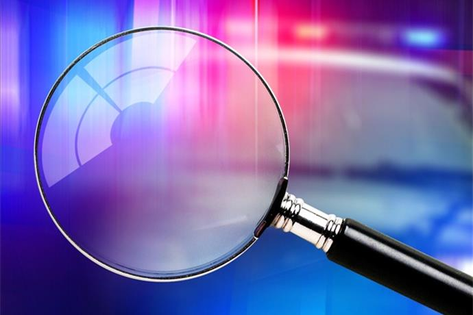 Mid-Missouri Deputies Continue Investigation of 8 Puppies Found Dead_7670769334201699438