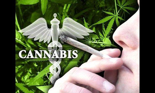 cannabis_1485368672557.jpg