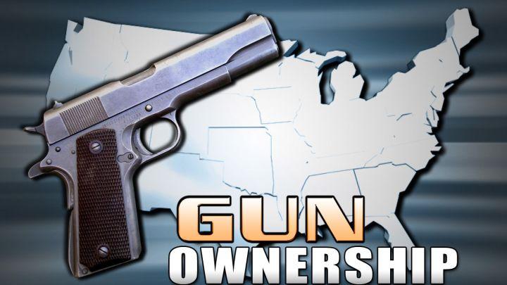 gun ownership_1485859122510.jpg