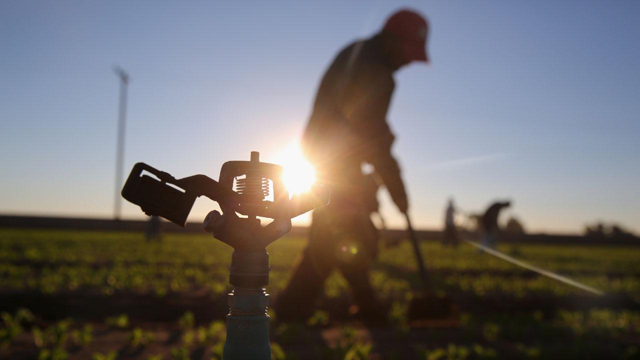 Farmer%2C%20sprinkler_1486138057002_191443_ver1_20170203161456-159532
