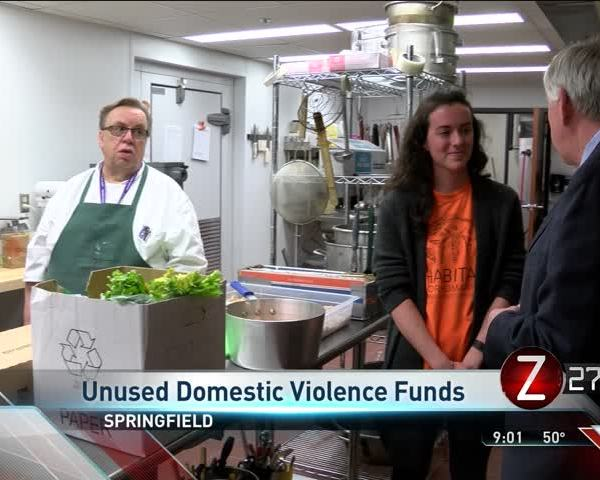 Millionsof Unused Dollars for Domestic Violence Efforts_82593101