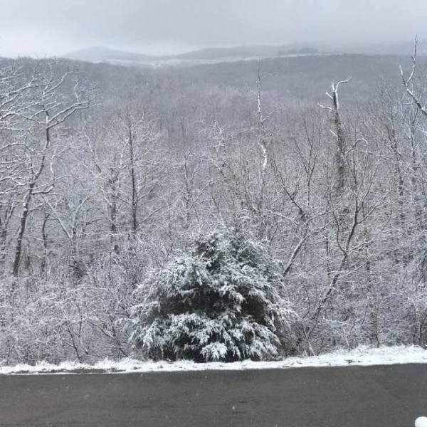 winter weather-3_1489268360610.jpeg