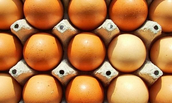 Eggs_3679391200660868-159532