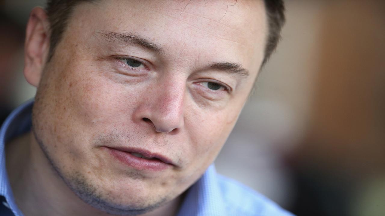 Elon Musk blurb04256750-159532