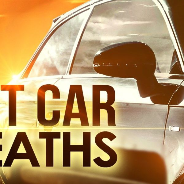 hot car deaths graphic_1497441209525.jpg