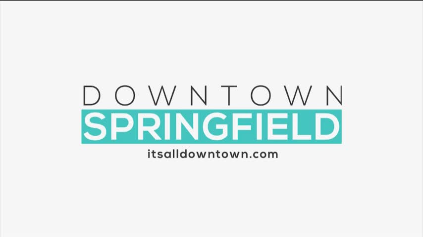 Downtown Springfield Association - Craft Beer Bash - 7/27/17