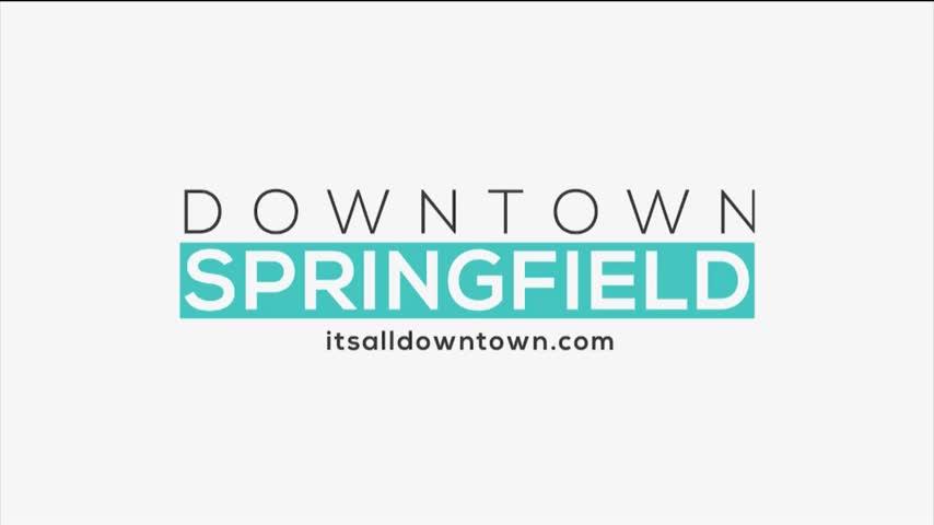 Downtown Springfield Association - Craft Beer Bash - 7/27/17