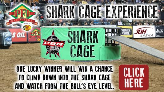533x300 shark cage_1501529724079.jpg