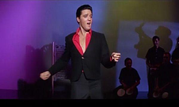 Elvis_1502875476095.jpg