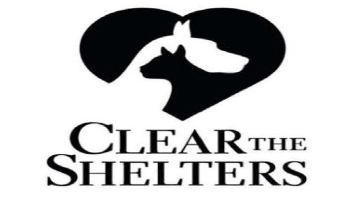 clear the shelters_1503189841565.jpg