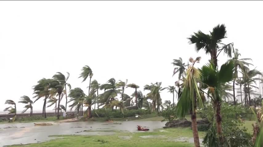 Springfield Women Survive Hurricane Maria_47965689