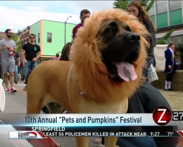Pets and Pumpkins Festival Showcases Costume Parade_74704862
