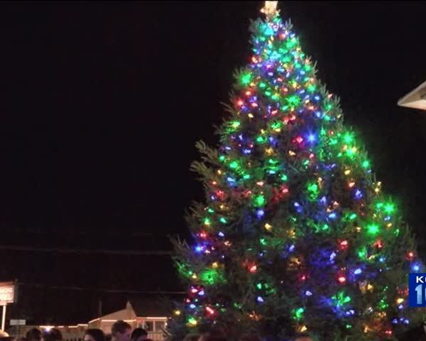 Isabel-s House Kicks Off Holiday Season with Tree Lighting_29053740