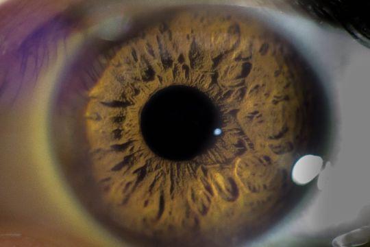 eye health_1510047782204.jpg