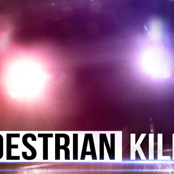 pedestrian killed_1510921227585.jpg
