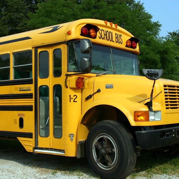 school-bus-2645085_1920_1510612212488.jpg