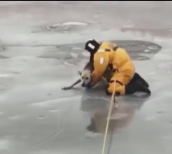 Canadian_Firefighters_Pull_Off_Daring_Do_0_20171207042442