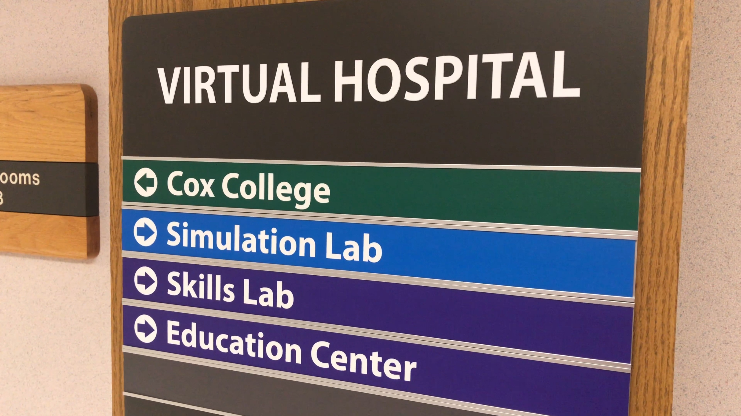 Cox College Occupational Therapy Virtual Hospital