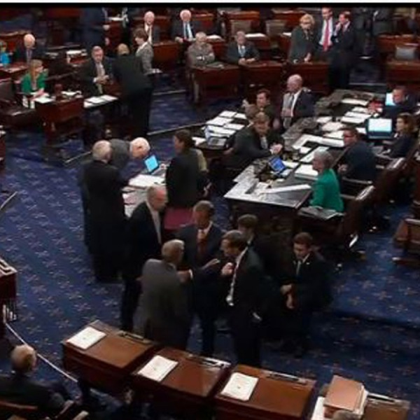 Senate floor during procedural vote_1501008624118-159532.JPG49377742