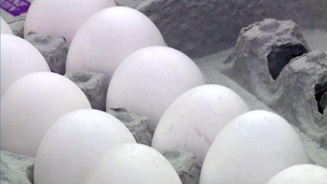 eggs_1512470551530.jpg