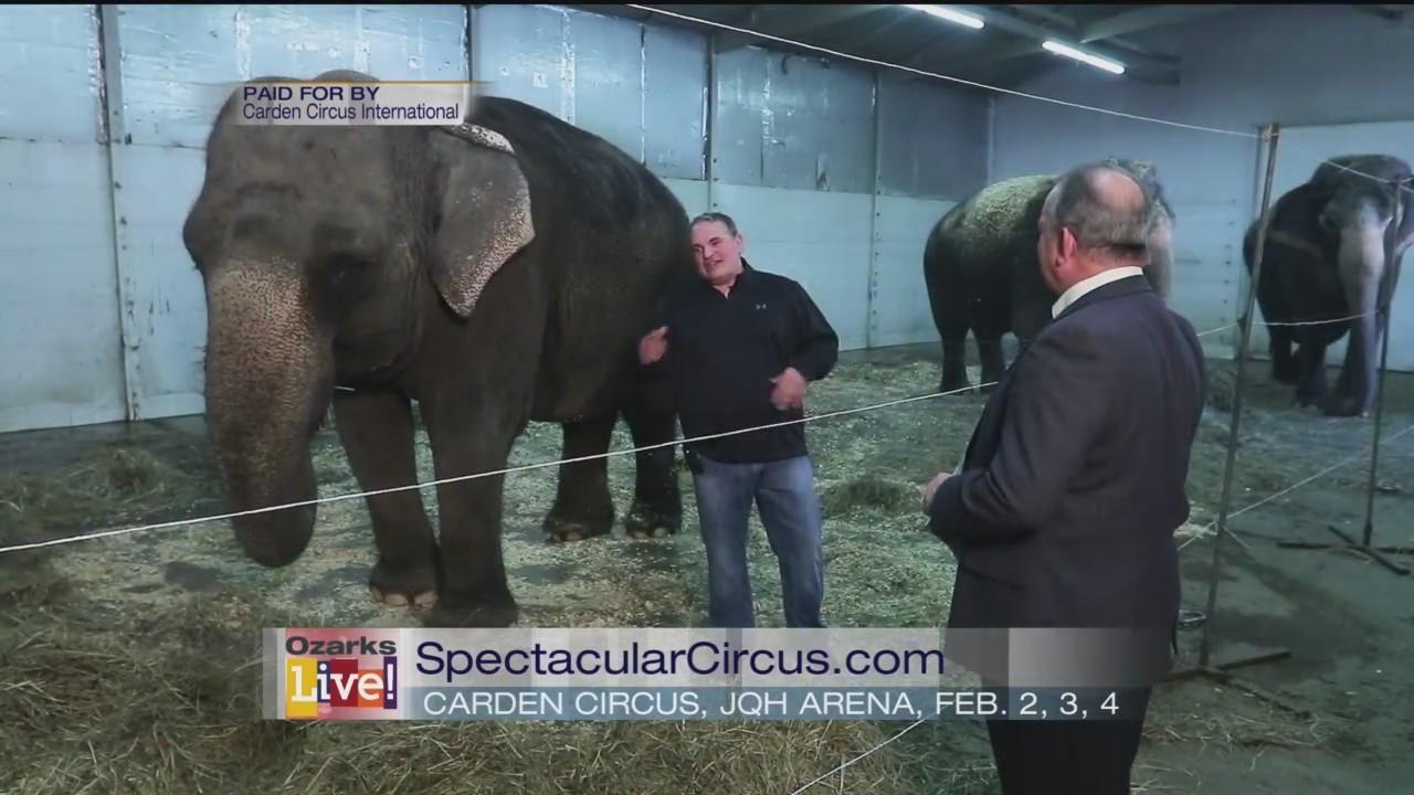 Carden Circus International - 1/29/18