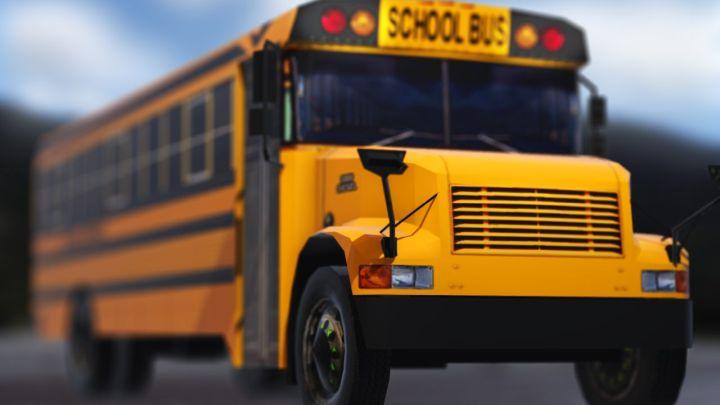 school bus 23_1514404774668.jpg.jpg