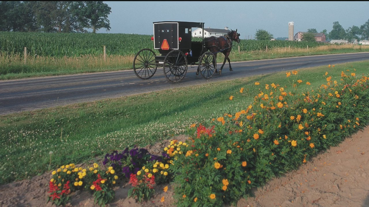 AdVance Tour & Travel - Amish Country - 4/17/18