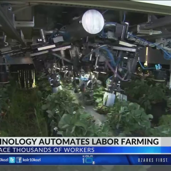Farmers_Look_to_Artificial_Intelligence__0_20180425022731