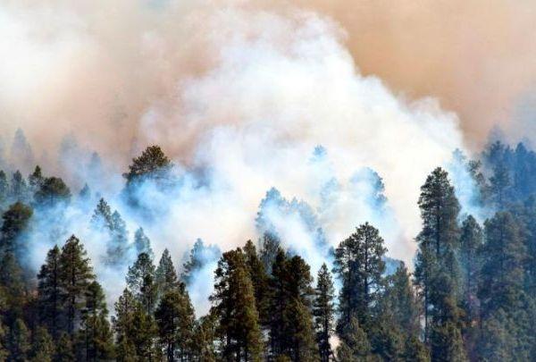arizona fire_1525640951912.jpg.jpg