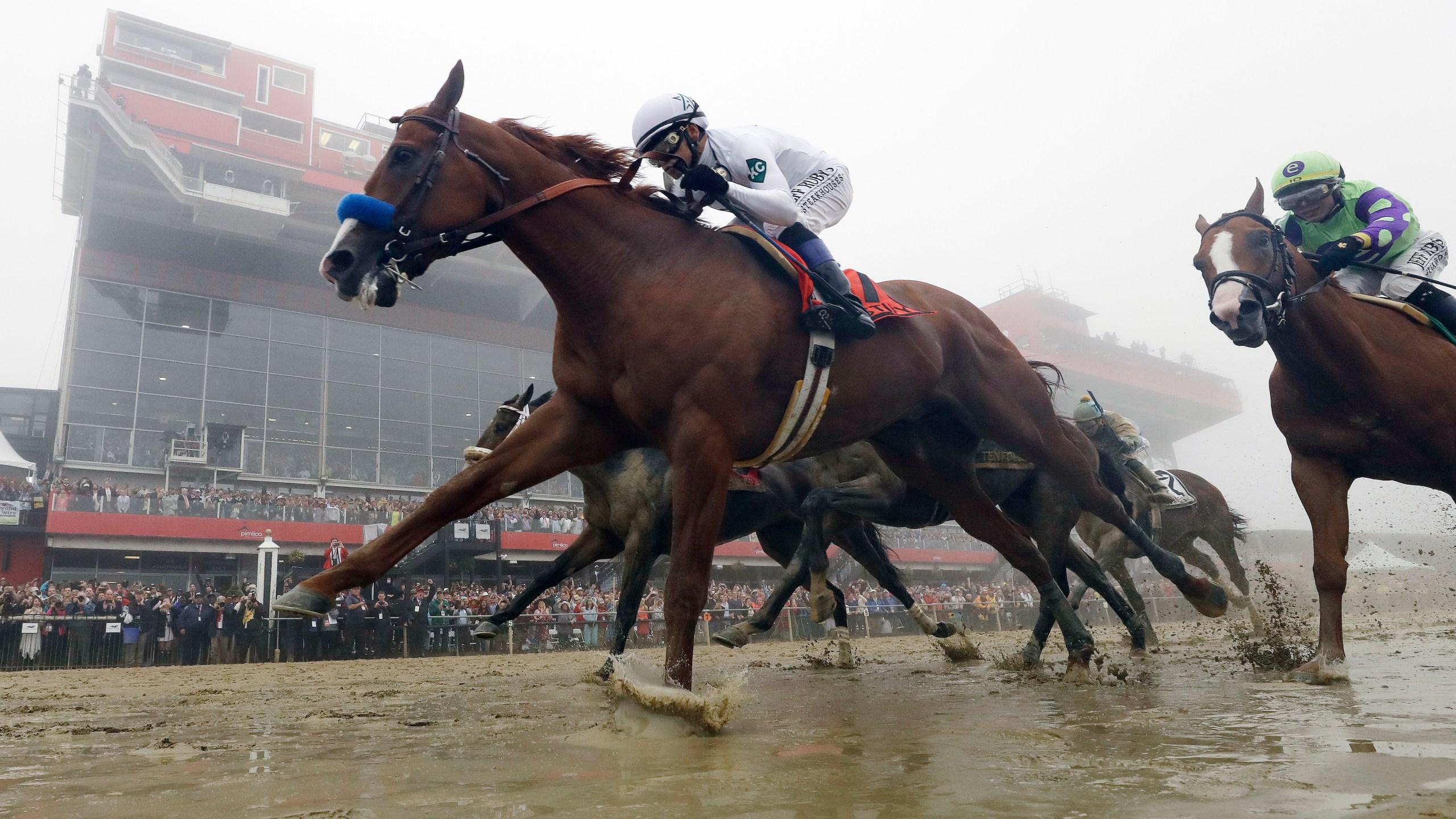 Justify_Triple_Crown_Horse_Racing_88335-159532.jpg83499478
