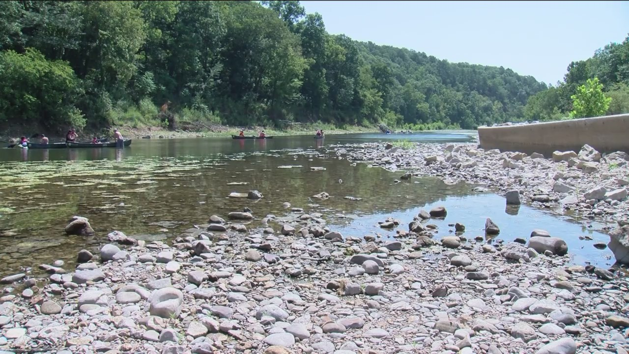 Algae Bloom in Buffalo River