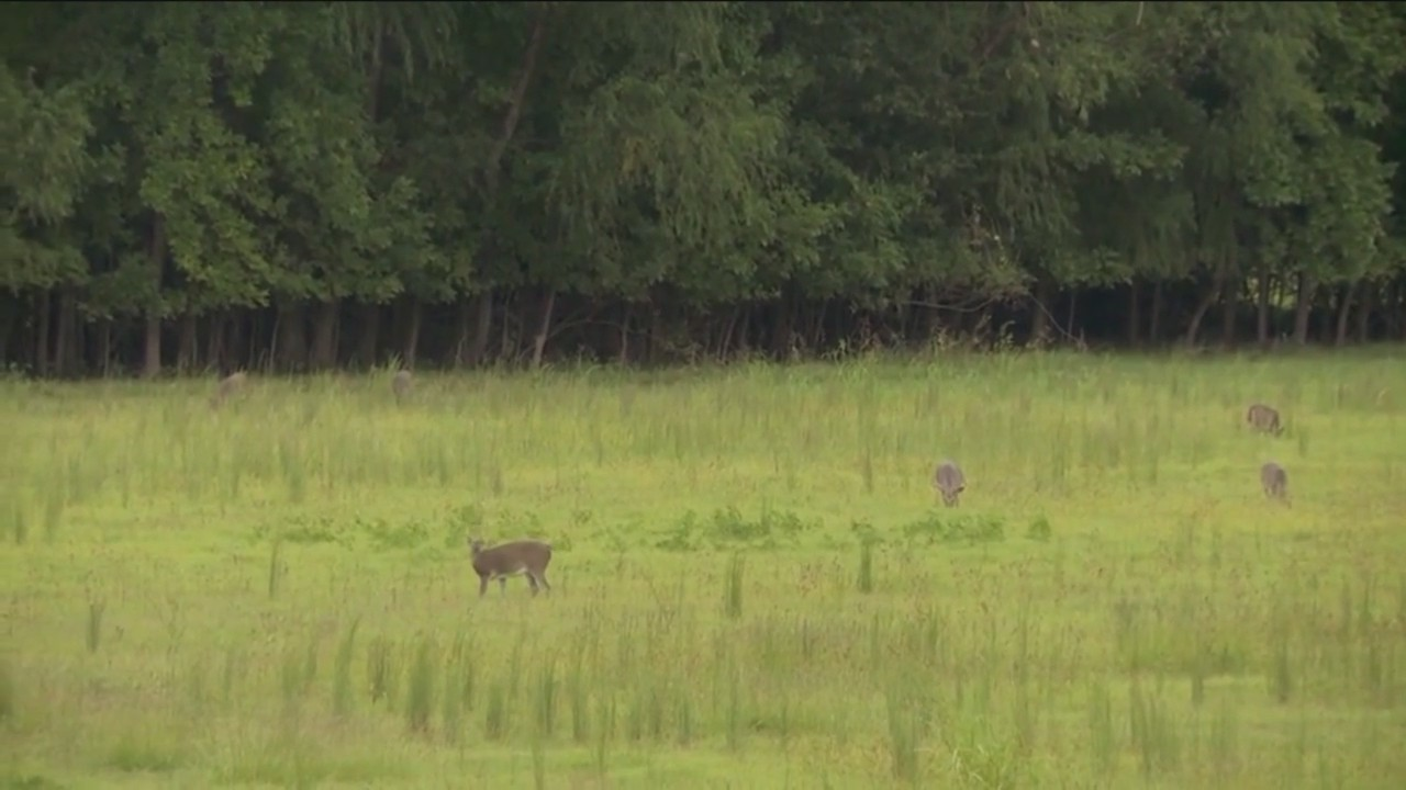 Business Introduces Short-Term Hunting Leases