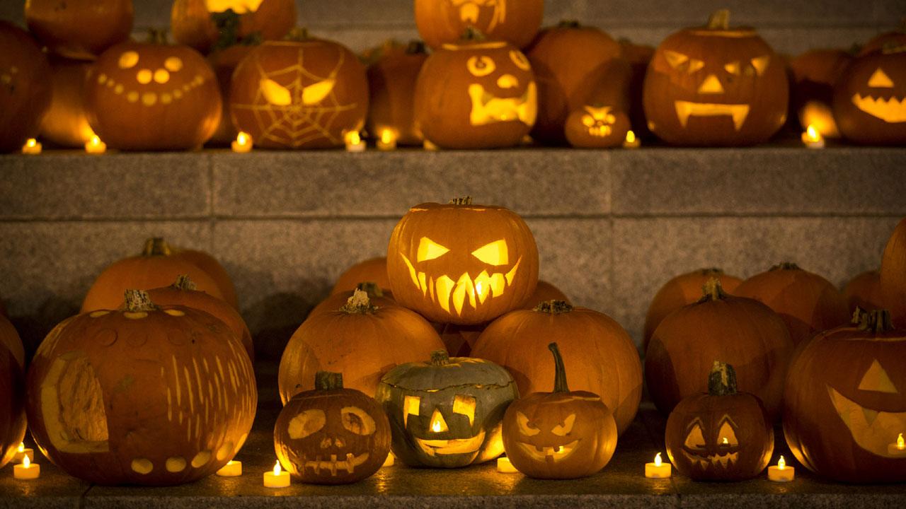 Halloween pumpkins, jack-o'-lantern03556881-159532