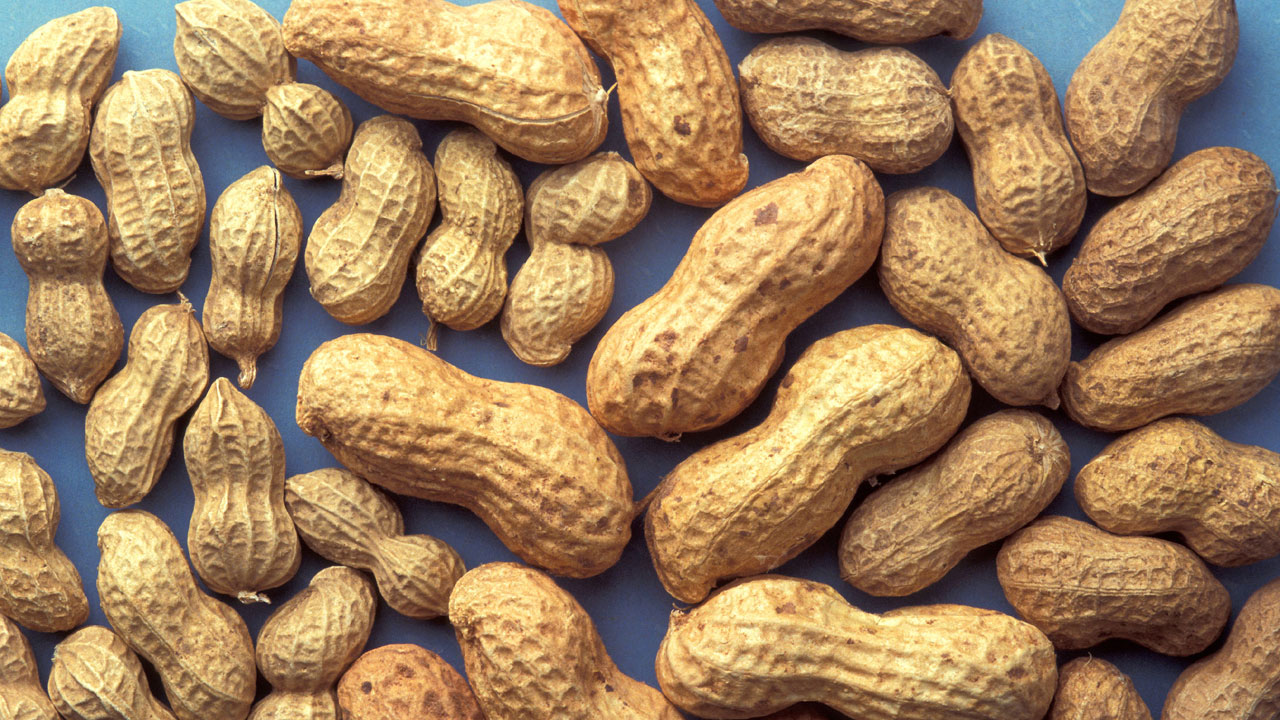 best worst nuts - peanuts52842655-159532
