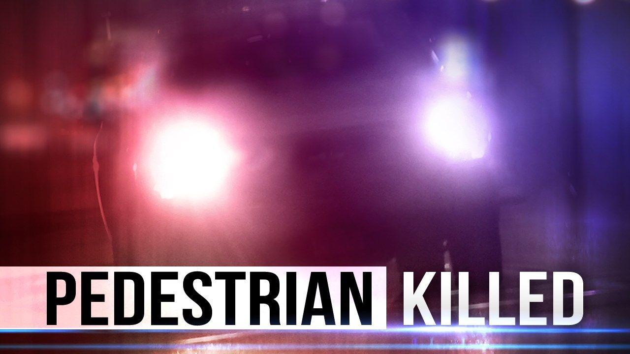 pedestrian killed_1496999673482.jpg