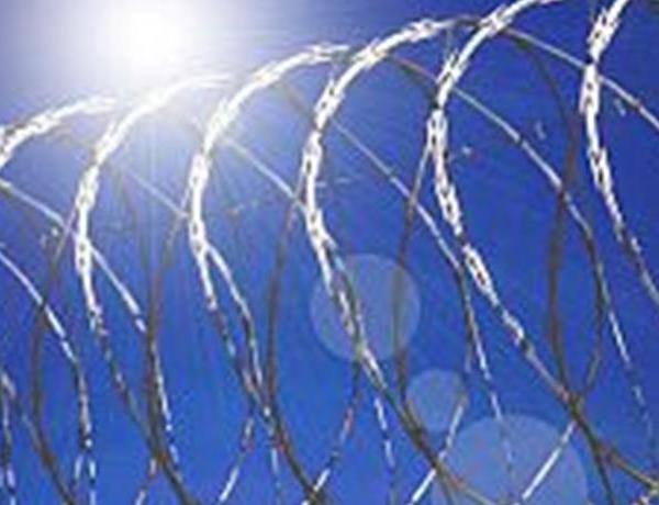 Report Reviews Options For Keeping Cell Phones Out Of Prisons_1265361947544011700