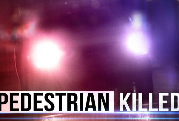 pedestrian killed_1546814578647.jpg.jpg