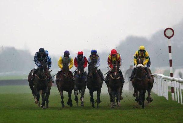 race fight_1550427865632.jpg.jpg